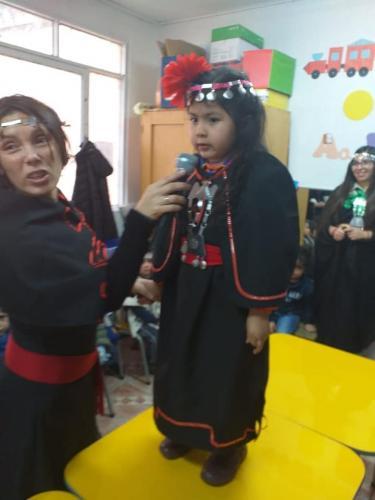 pueblos originarios 2019 1002