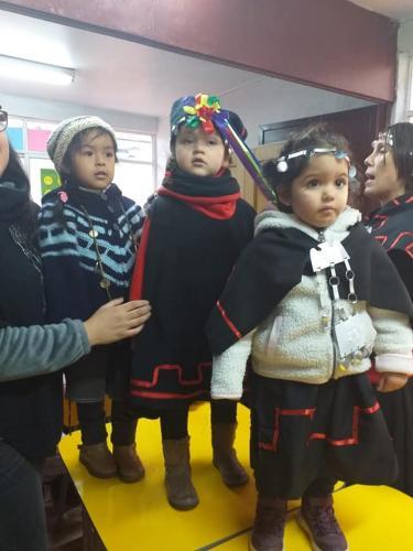 pueblos originarios 2019 1007