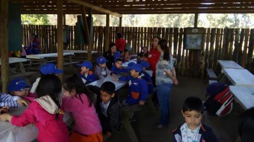 salida pedagogica 16